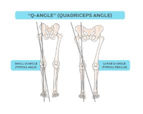 quadriceps angle .png