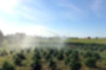 Mt Folly Farm Irrigation 2019