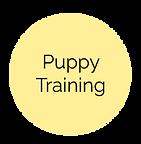 PuppyTrainingDesc.png