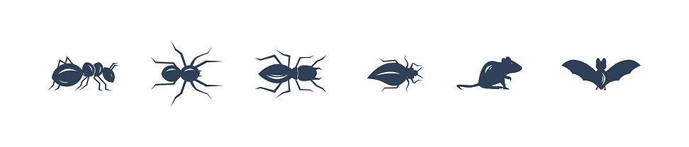 bugs-05.jpg