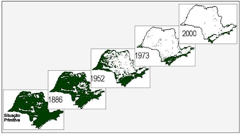 Mapas SP.jpg
