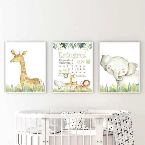 Hayvanlar Alemi Doğum Panolu Set