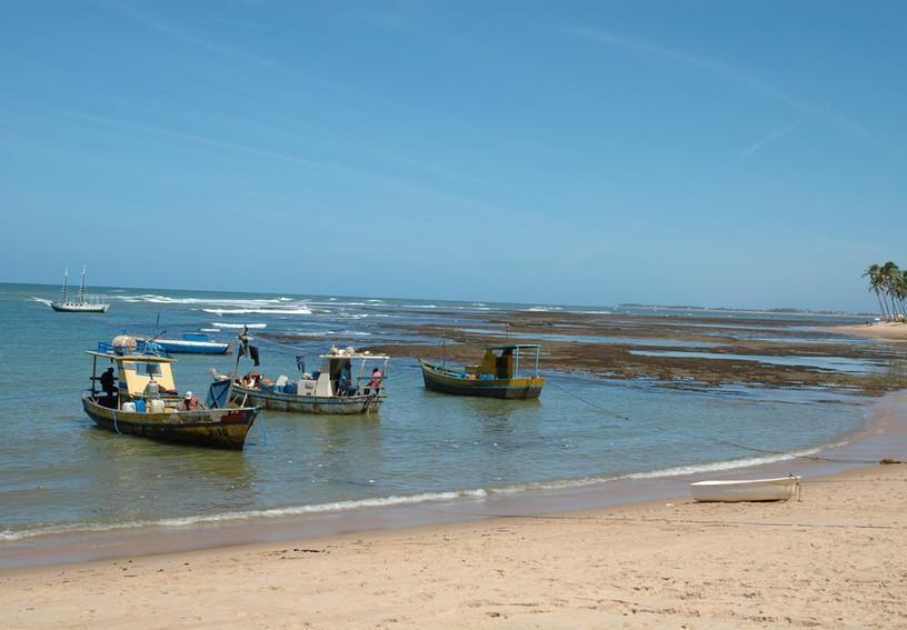 Praia do Forte.jpg.JPG