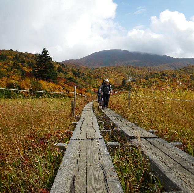 Mt. Kurikoma