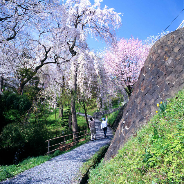 Tsuriyama