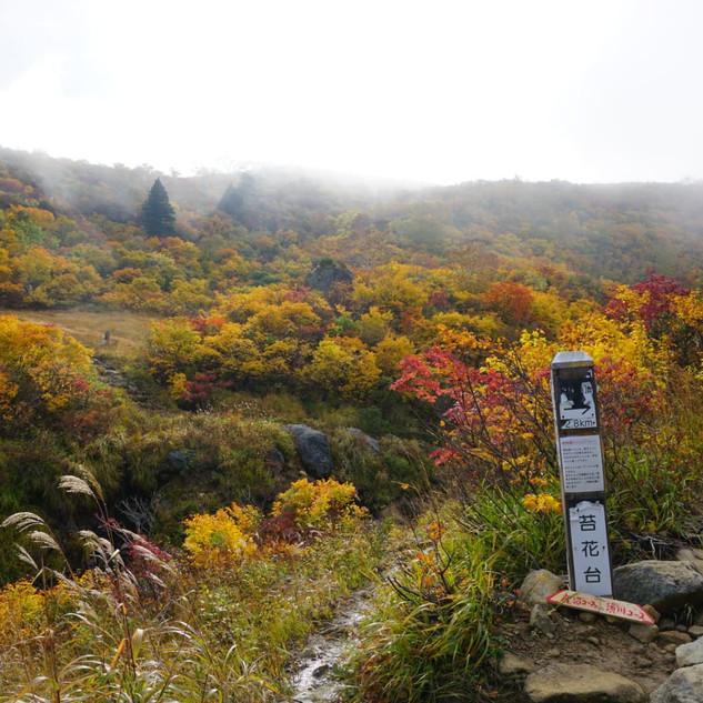 Mt Kurioma