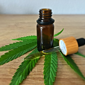 The Effects of Cannabidiol as Treatment for Anxiety