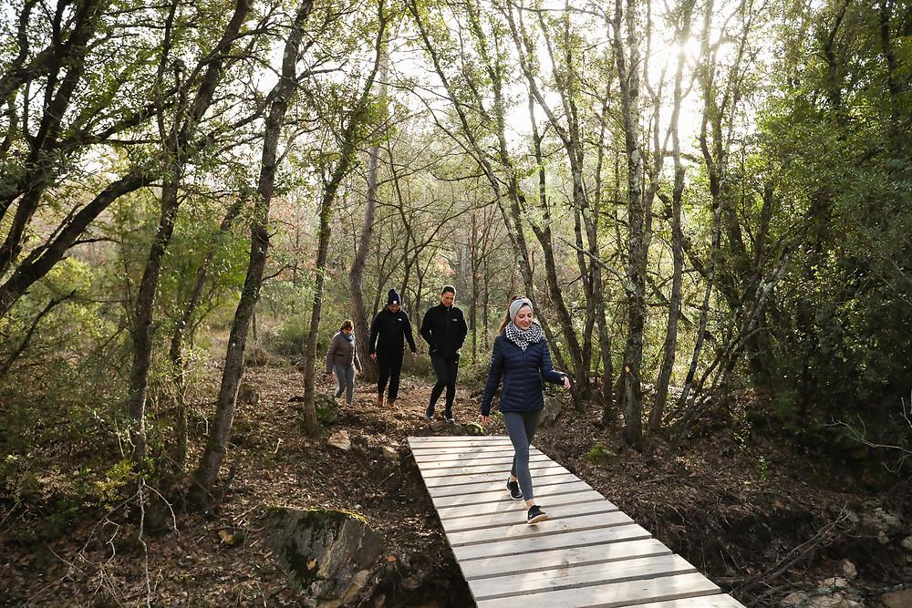 groupe personnes marche pont forêt