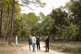 Domaine Monte Verdi-32.jpg