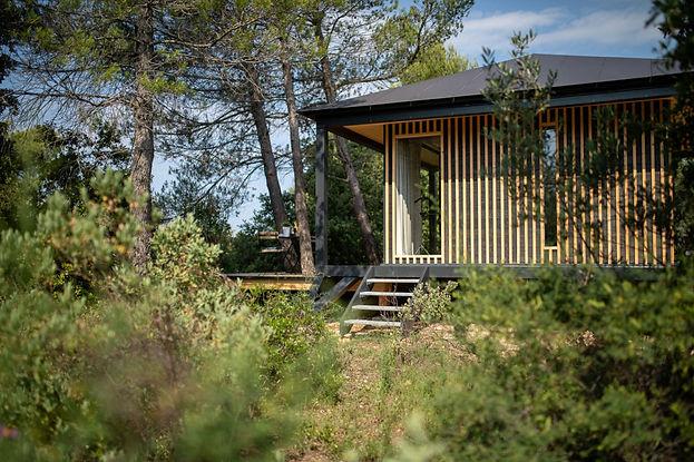 cabane insolite dans les arbres