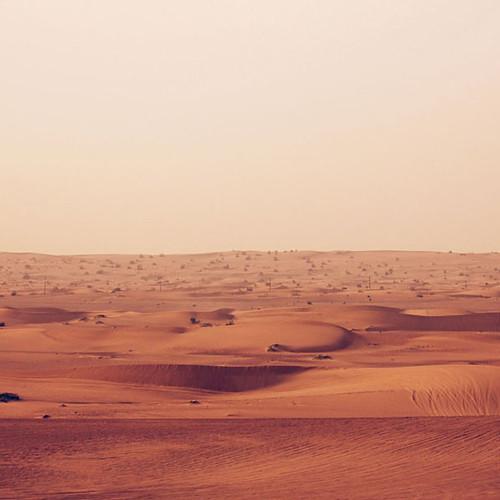 DESERT / DUBAI