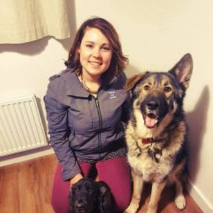 Dog Trainer, Puppy Classes, Dog Walking, Puppy Training, Dog Trainer, Dog Walker