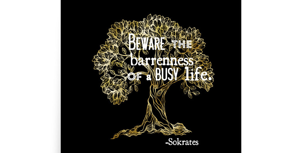 Olive Tree + Sokrates Quote Poster