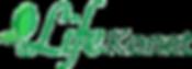 LifeKonet_Logo_Web_RGB_02 copy.png