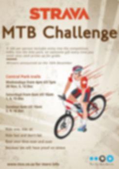 Strava Challenge 2018.JPG