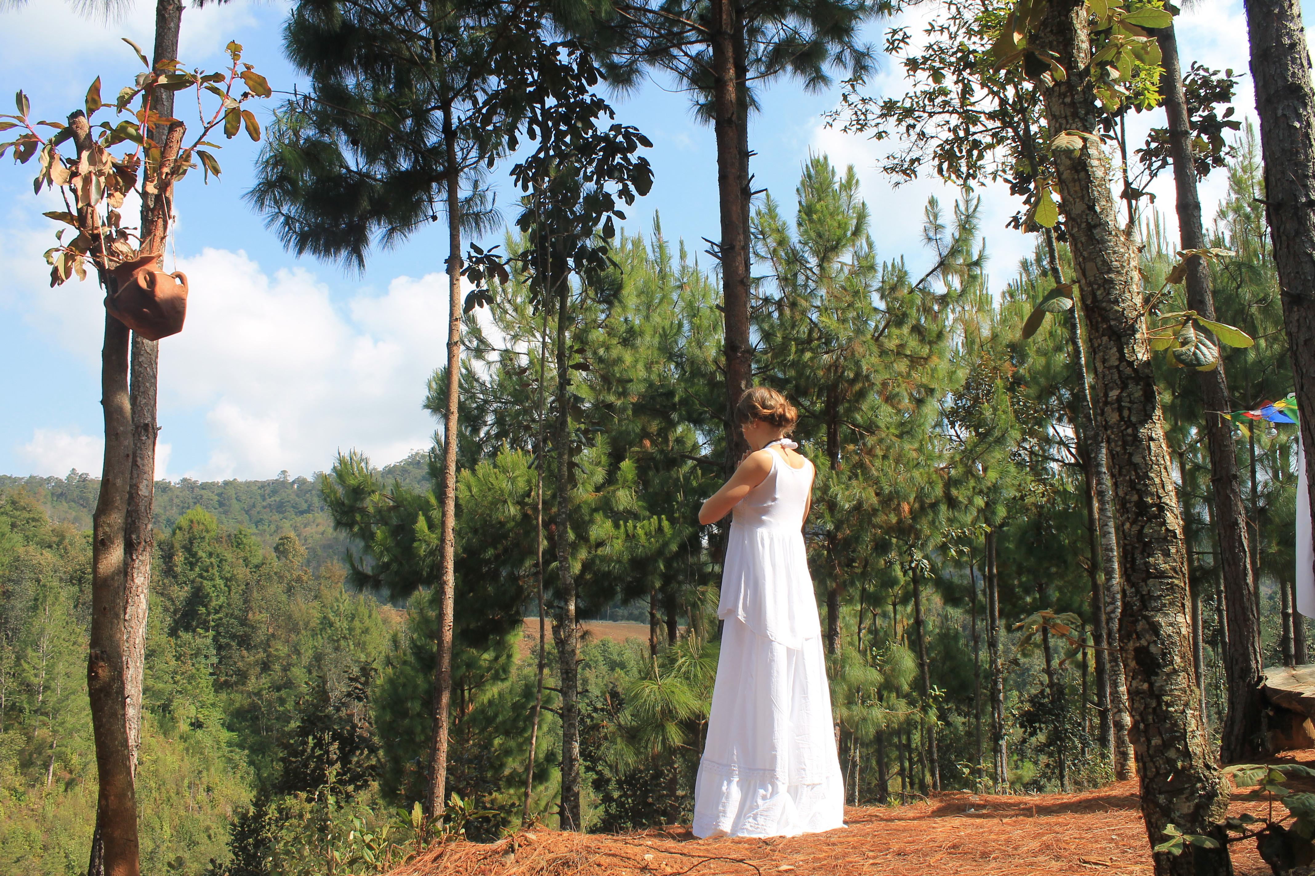 10 Day Hridaya Silent Meditation Retreat