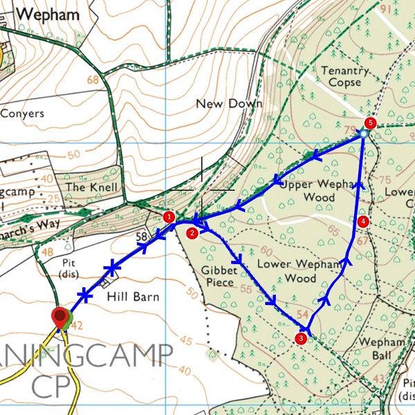 Walk - Wepham Wood - MAP.jpg