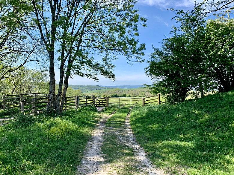 Country track near Bignor Hill, West Sus