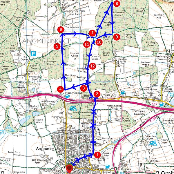 Walk - Woodland Wander - MAP.PNG