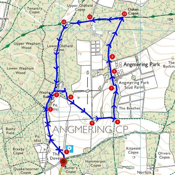 Walk - Angmering Stud Farm - MAP.jpg