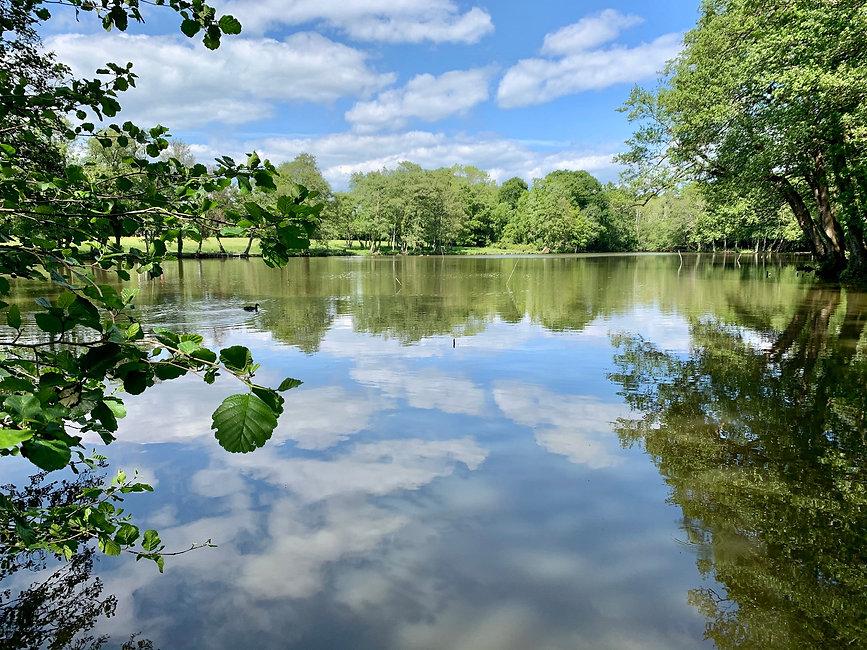 Walk - Decoy Ponds - A1.jpg