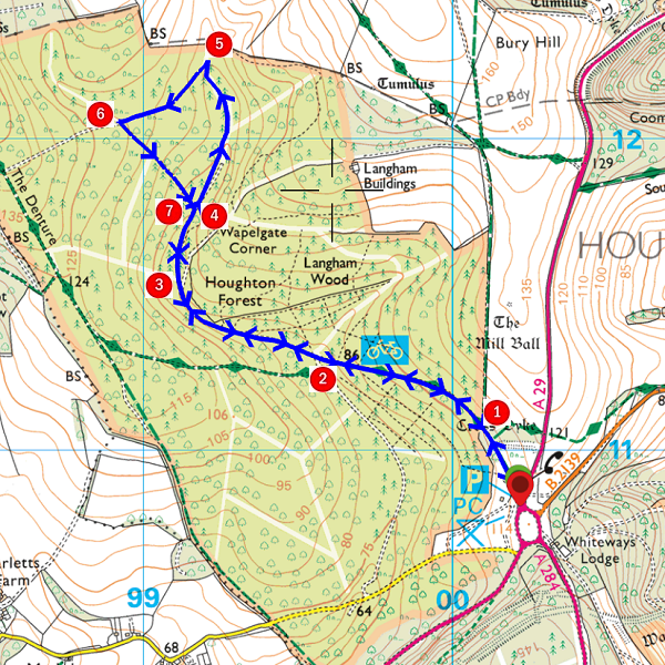 Walk - Houghton Forest - MAP.PNG