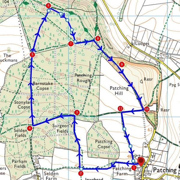 Walk - Patching Hill - MAP.jpg