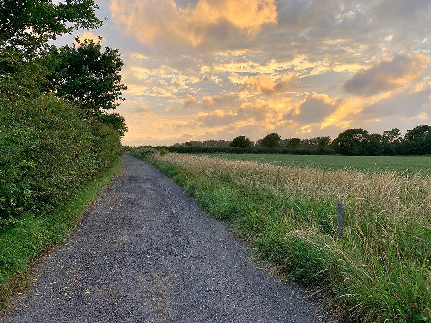 Walk - Poling Paths - A1.jpg
