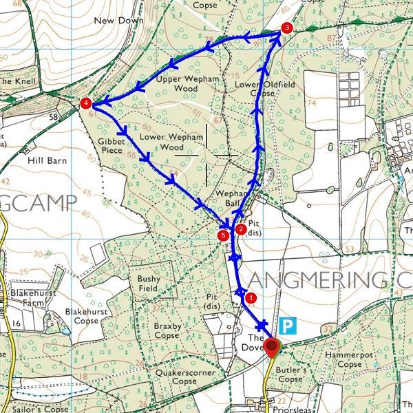 Walk - Wepham Triangle - MAP.jpg