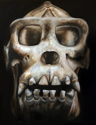 """Alla Prima Painting Ape Anatomical Study Oil on Canvas Panel Dimensions: 16"""" x 20"""""""