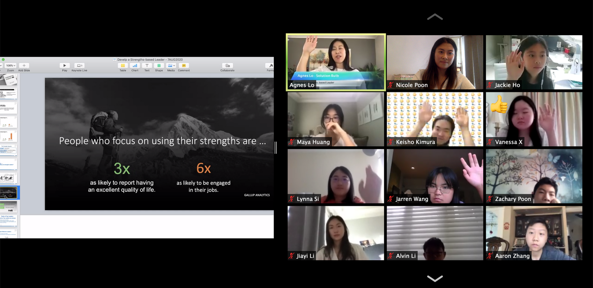 Online Strengths Discovery Training.png
