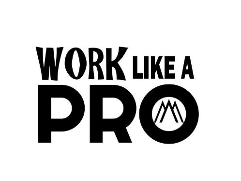 Work Like a PRO tshirt