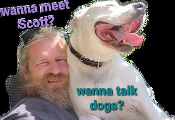wanna talk dogs.png