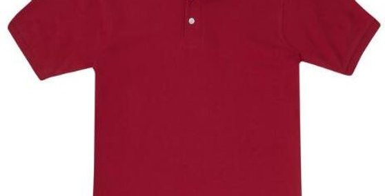 EP9084 Boy's short sleeve polo ( set of 4 shirts)