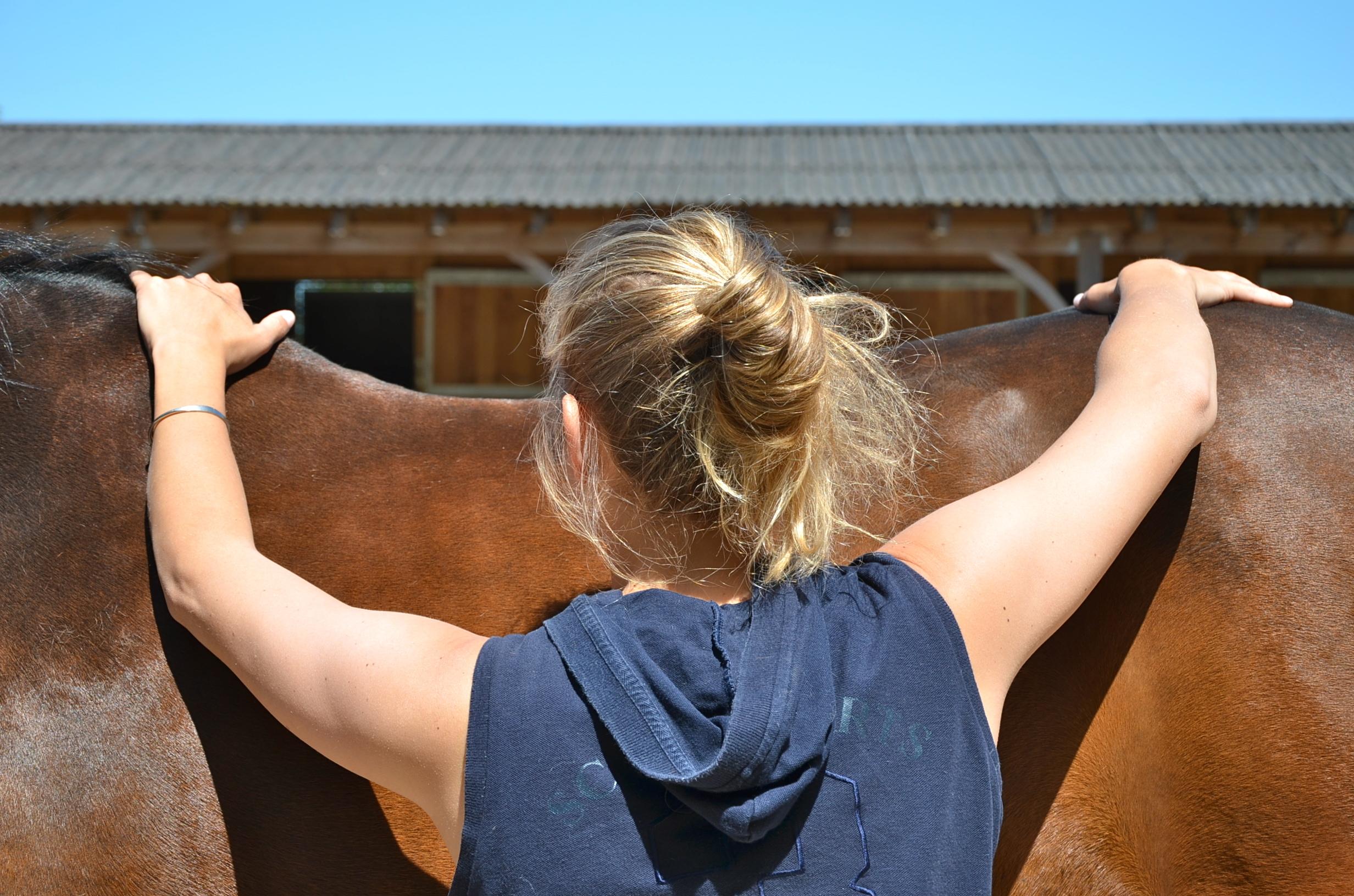 ostéopathe cheval calvados