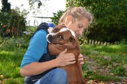 ostéopathe canin cabourg
