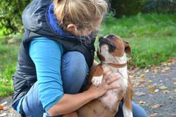 ostéopathe canin calvados