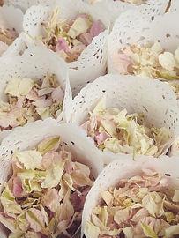 confetti cones natural petals lavender biodegradable confetti