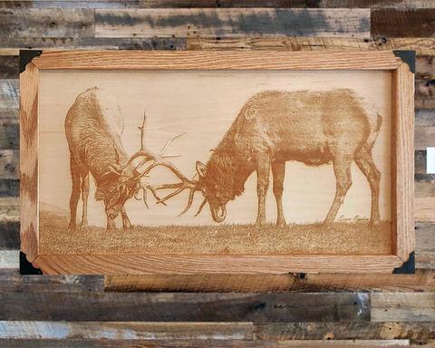 Sparing Elk in Wood Canvas
