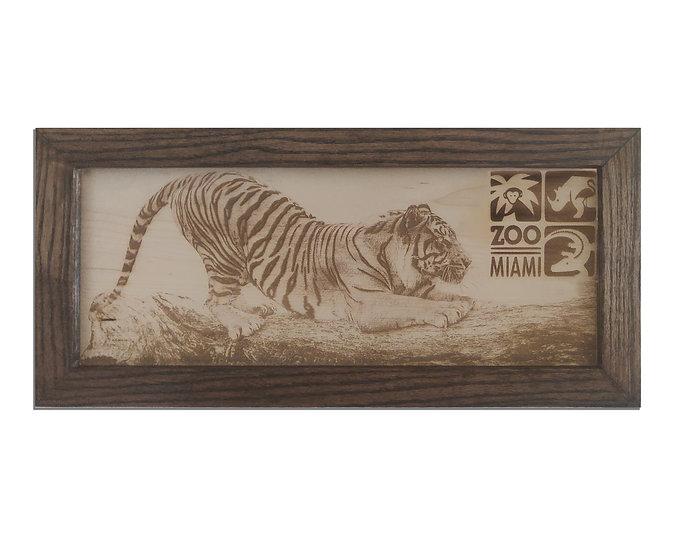 Framed Tiger Photograph