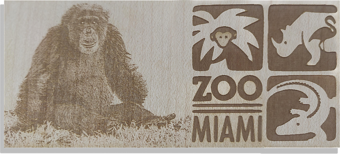 Side by side Chimpanzee w/Logo