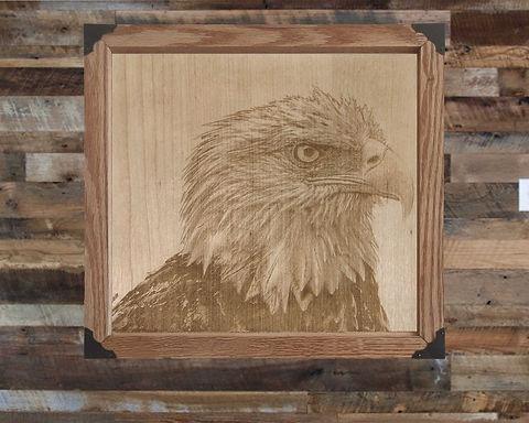 Bald Eagle Engraving