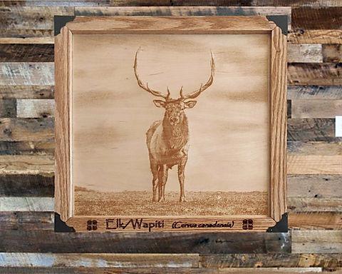 Majestic Elk on Wood Canvas