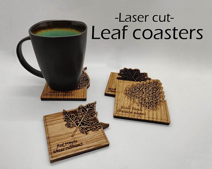 Anatomical Leaf coasters