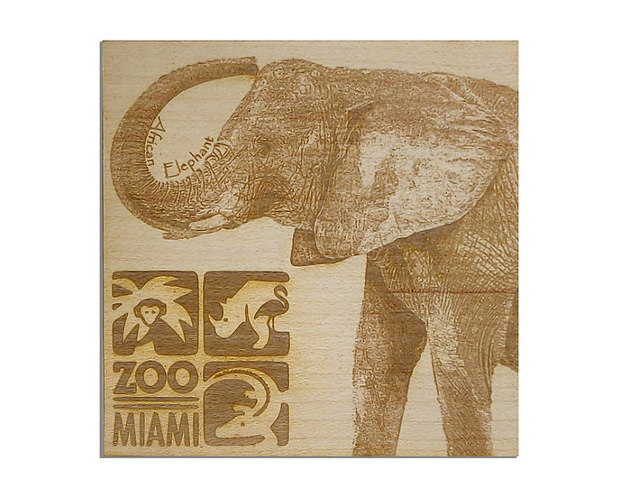 African elephant W/ Name and Logo
