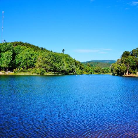 Laguna Pingueral