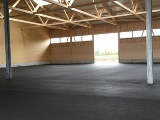 Umbau Stall von Büren in Büren an der Aare