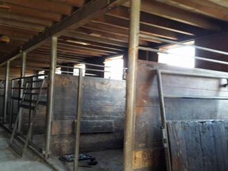 Der alte Stall wird umgebaut