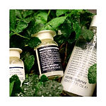 Vegan hair products Hove