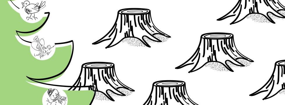 banner_xmas_cards.png